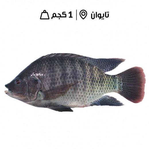 دانة - سمك بلطي مجمد 300/500 - 1 كجم