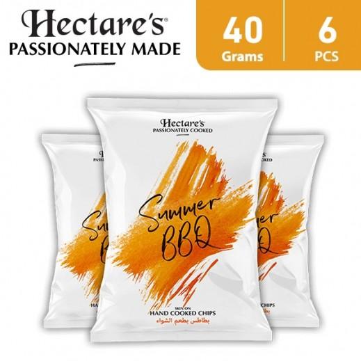 هيكترز - رقائق بطاطس بطعم الشواء 6 × 40 جم