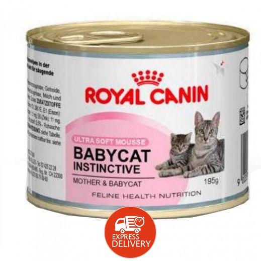 رويال كانين - وجبة طعام شهية للقطط الصغيرة معلب  195 جم