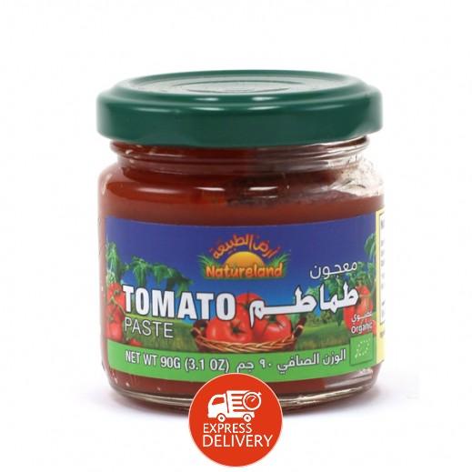 أرض الطبيعة – معجون طماطم عضوي 90 جرام