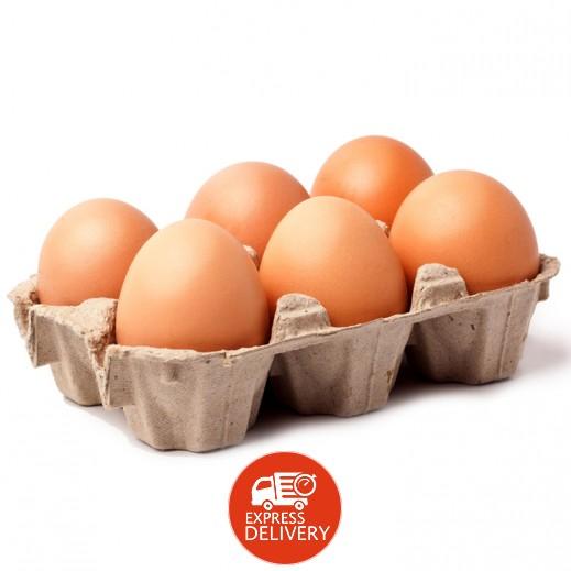 إيفا – بيض بني طازج 6 حبات
