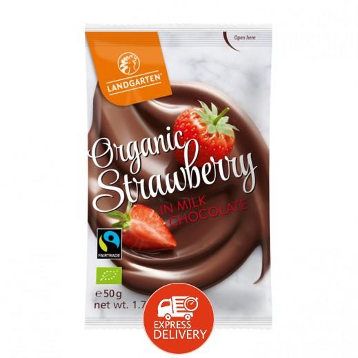 لاندرجارتن - شوكولاته عضوية مع الفراولة والحليب 50 جم