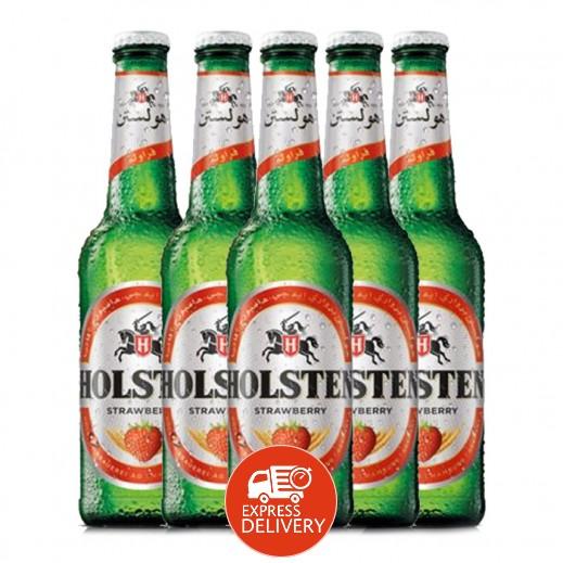 هولستن – مشروب الشعير بنكهة الرمان 6 × 330 مل
