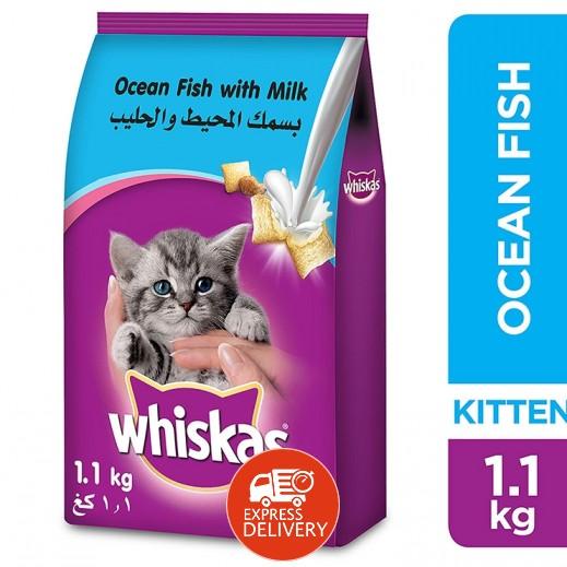 ويسكاس – طعام القطط الجاف مع سلمون المحيط والحليب 1.1 كجم