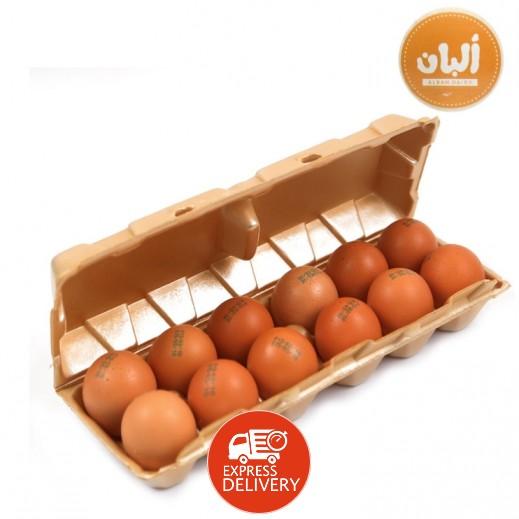 ألبان – بيض بني طازج 12  حبة