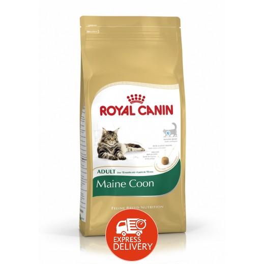 رويال كانين - طعام القطط البالغة فيلين بريد (قط مين كون) 2 كجم