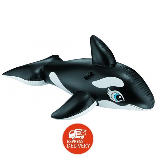 إنتكس – لعبة ركوب الحوت في الماء