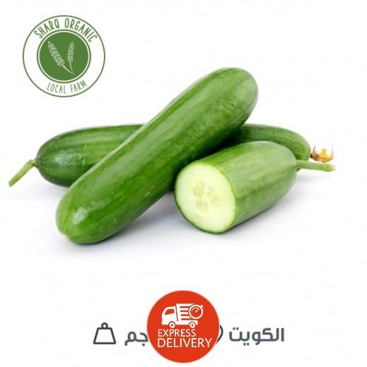 خيار طازج (الكويت) 250 جم